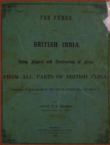 The Ferns of British India
